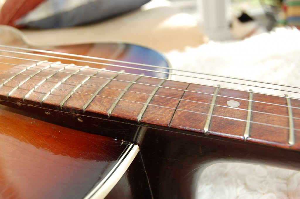 A few frets missing..