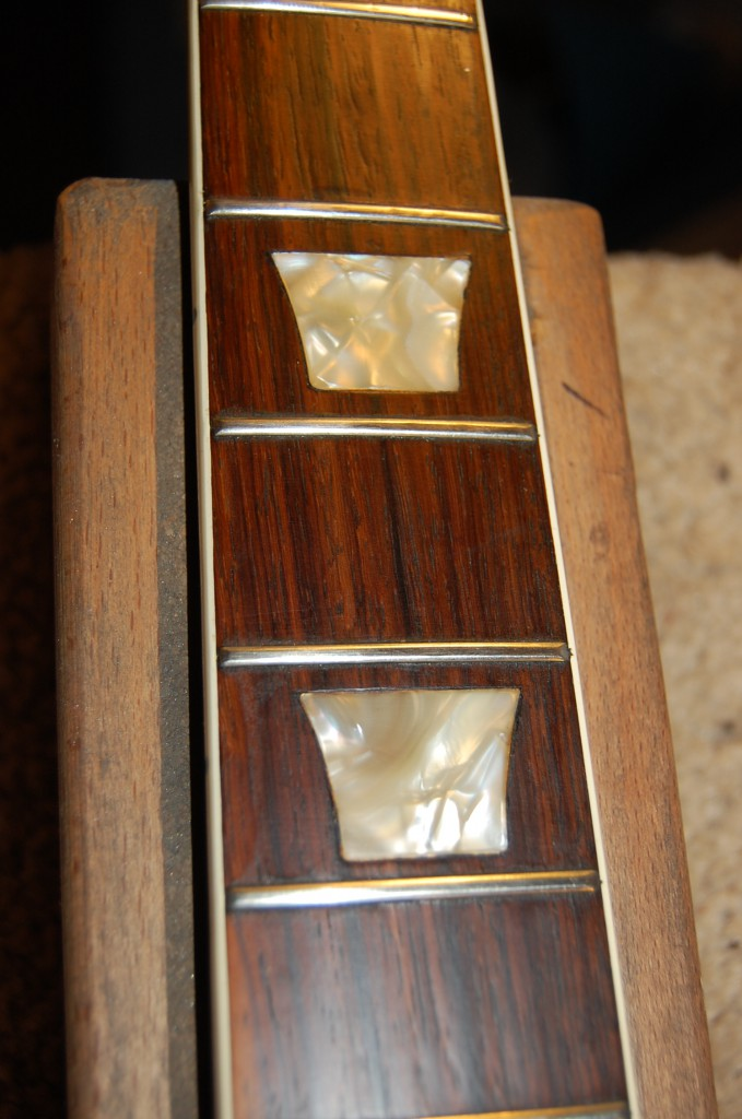 Noce pearloid inlays after cleaning